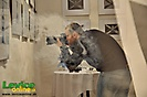 Výstava mladého umenia - Academic absurdity, Levice, 22.2.2013